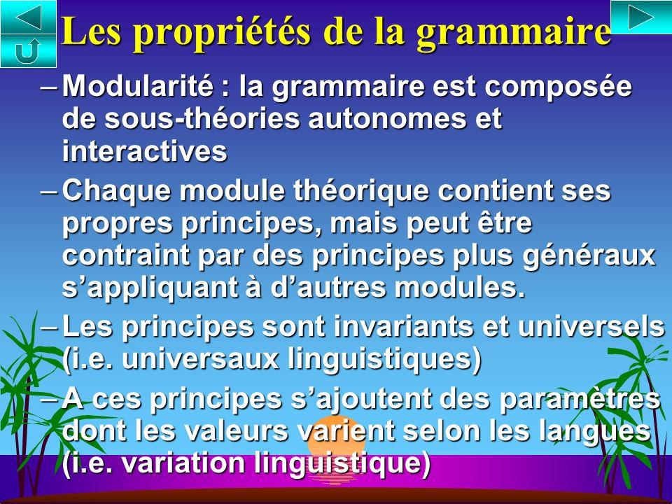 Les propriétés de la grammaire –Modularité : la grammaire est composée de sous-théories autonomes et interactives –Chaque module théorique contient ses propres principes, mais peut être contraint par des principes plus généraux sappliquant à dautres modules.