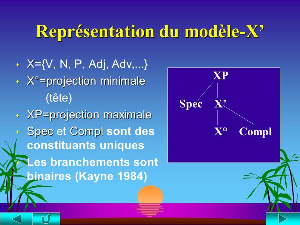 Représentation du modèle-X s X s X={V, N, P, Adj, Adv,...} s X°=projection minimale (tête) s XP=projection maximale s SpecCompl s Spec et Compl sont des constituants uniques s Les branchements sont binaires (Kayne 1984) XP Spec X X° Compl