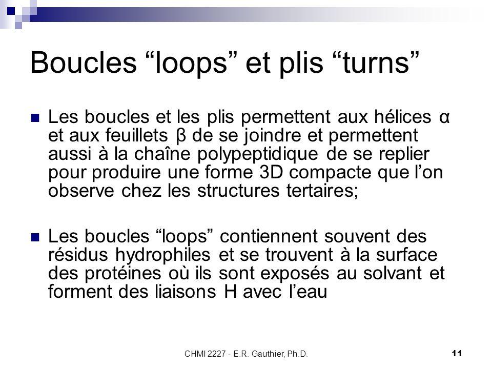 CHMI 2227 - E.R. Gauthier, Ph.D.11 Boucles loops et plis turns Les boucles et les plis permettent aux hélices α et aux feuillets β de se joindre et pe