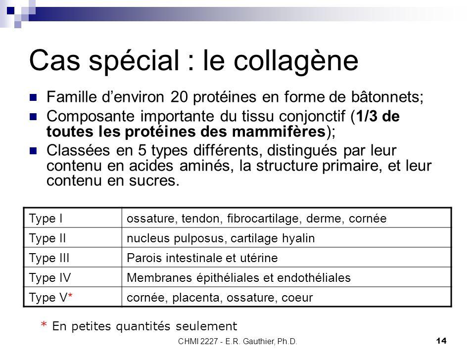 CHMI 2227 - E.R. Gauthier, Ph.D.14 Cas spécial : le collagène Famille denviron 20 protéines en forme de bâtonnets; Composante importante du tissu conj