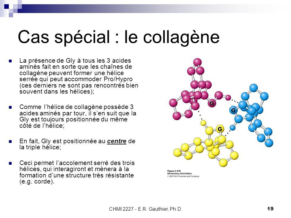 CHMI 2227 - E.R. Gauthier, Ph.D.19 Cas spécial : le collagène La présence de Gly à tous les 3 acides aminés fait en sorte que les chaînes de collagène