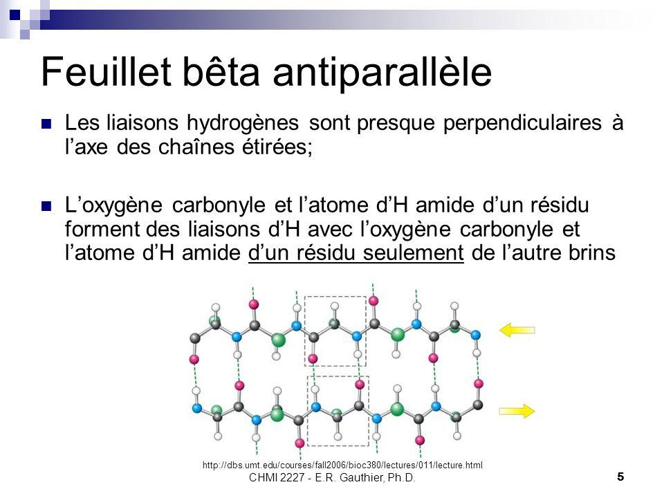 CHMI 2227 - E.R. Gauthier, Ph.D.5 Feuillet bêta antiparallèle Les liaisons hydrogènes sont presque perpendiculaires à laxe des chaînes étirées; Loxygè