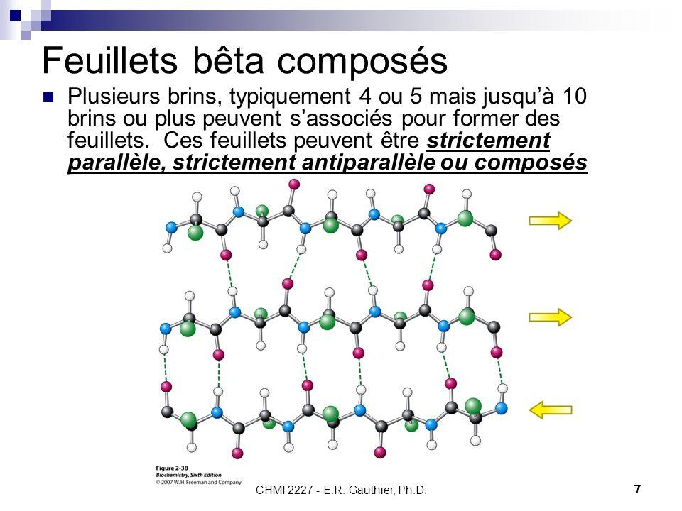CHMI 2227 - E.R. Gauthier, Ph.D.7 Feuillets bêta composés Plusieurs brins, typiquement 4 ou 5 mais jusquà 10 brins ou plus peuvent sassociés pour form