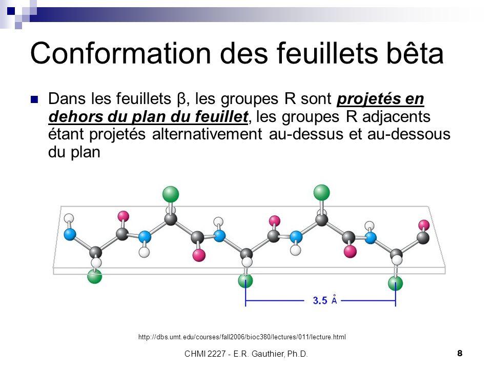 CHMI 2227 - E.R. Gauthier, Ph.D.8 Conformation des feuillets bêta Dans les feuillets β, les groupes R sont projetés en dehors du plan du feuillet, les