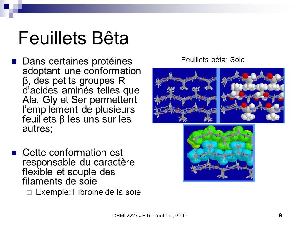 CHMI 2227 - E.R. Gauthier, Ph.D.9 Feuillets Bêta Dans certaines protéines adoptant une conformation β, des petits groupes R dacides aminés telles que