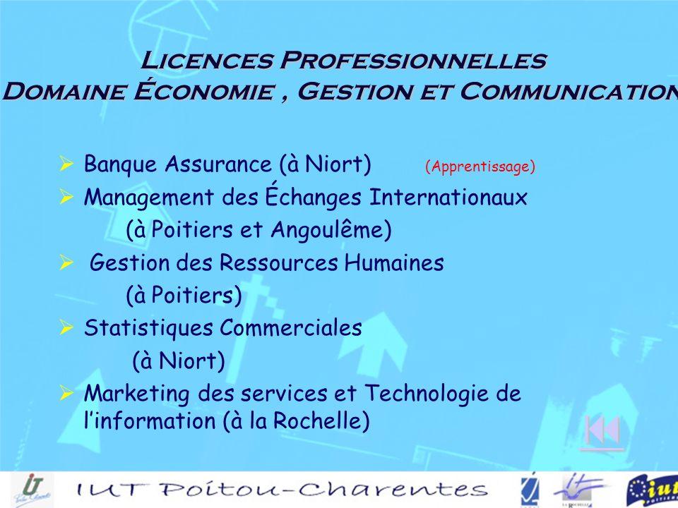 Licences Professionnelles Domaine Économie, Gestion et Communication Banque Assurance (à Niort) (Apprentissage) Management des Échanges Internationaux (à Poitiers et Angoulême) Gestion des Ressources Humaines (à Poitiers) Statistiques Commerciales (à Niort) Marketing des services et Technologie de linformation (à la Rochelle)