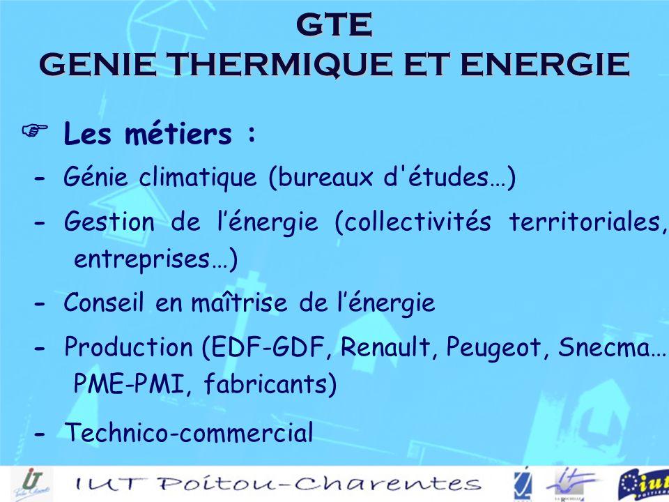 Les métiers : - Génie climatique (bureaux d études…) - Gestion de lénergie (collectivités territoriales, entreprises…) - Conseil en maîtrise de lénergie - Production (EDF-GDF, Renault, Peugeot, Snecma… PME-PMI, fabricants) - Technico-commercial