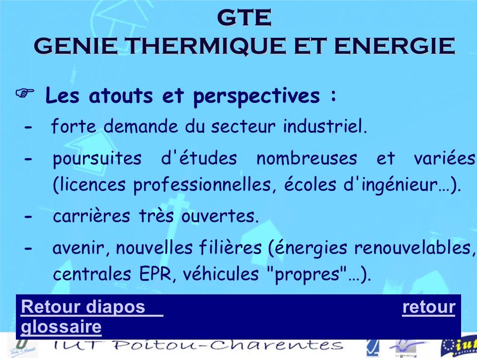 GTE GENIE THERMIQUE ET ENERGIE Les atouts et perspectives : - forte demande du secteur industriel.