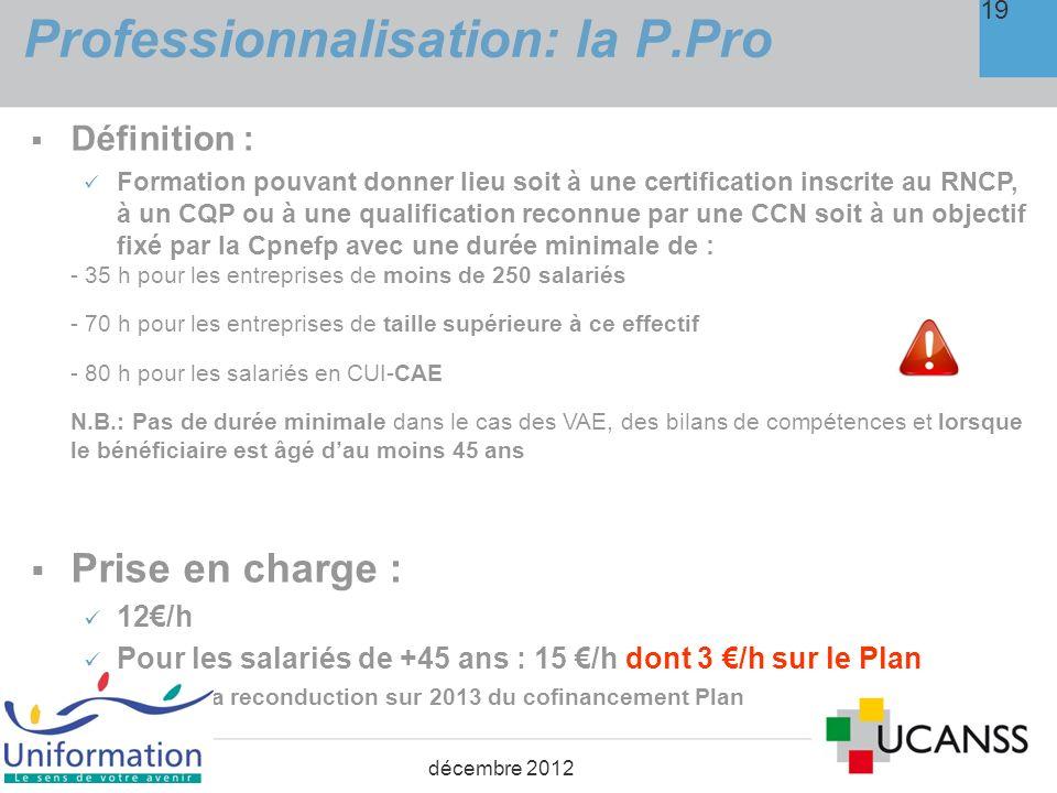 Professionnalisation : la P.