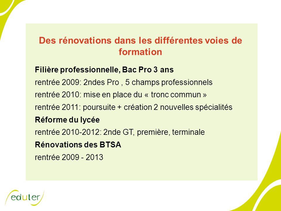 Des rénovations dans les différentes voies de formation Filière professionnelle, Bac Pro 3 ans rentrée 2009: 2ndes Pro, 5 champs professionnels rentré