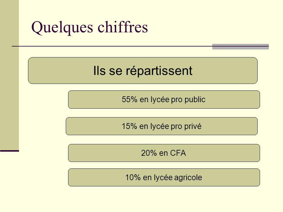 Quelques chiffres Ils se répartissent 55% en lycée pro public 15% en lycée pro privé 20% en CFA 10% en lycée agricole
