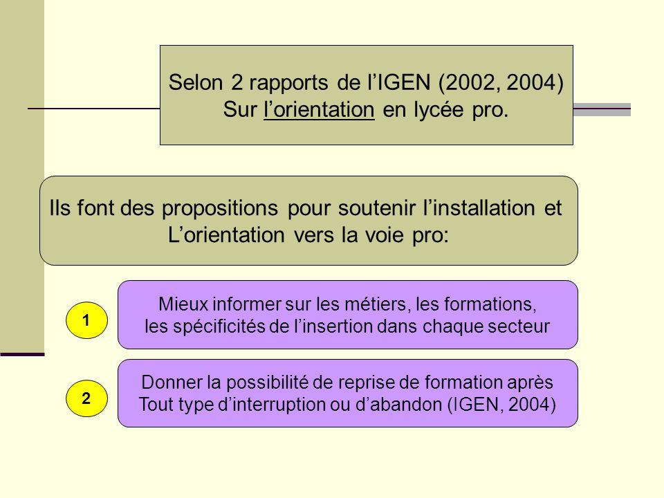 Selon 2 rapports de lIGEN (2002, 2004) Sur lorientation en lycée pro. Ils font des propositions pour soutenir linstallation et Lorientation vers la vo