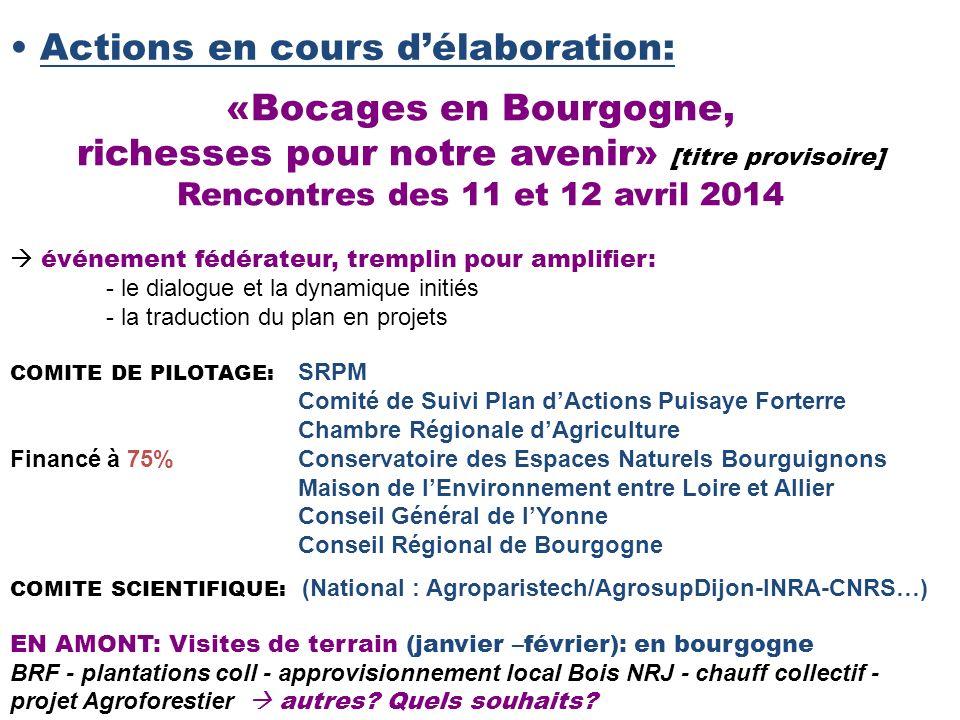 Actions en cours délaboration: «Bocages en Bourgogne, richesses pour notre avenir» [titre provisoire] Rencontres des 11 et 12 avril 2014 COMITE DE PIL