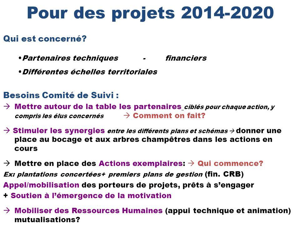 Pour des projets 2014-2020 Besoins Comité de Suivi : Mettre autour de la table les partenaires ciblés pour chaque action, y compris les élus concernés Comment on fait.