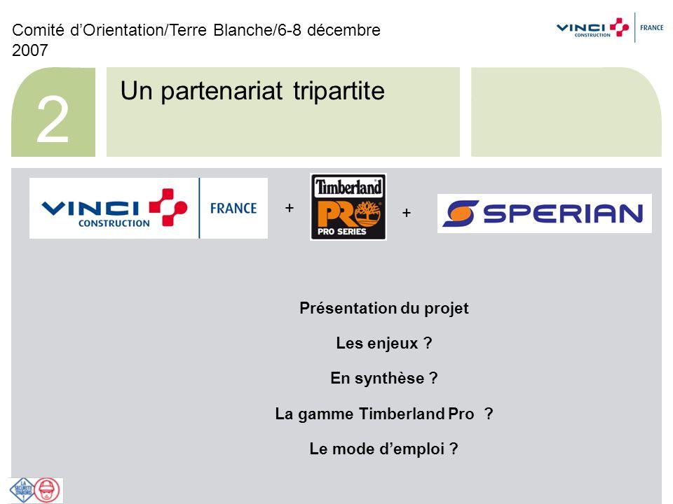 Comité dOrientation/Terre Blanche/6-8 décembre 2007 13 Le mode demploi .