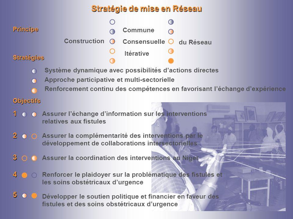 Stratégie de mise en Réseau Objectifs Assurer léchange dinformation sur les interventions relatives aux fistules1 Assurer la complémentarité des inter