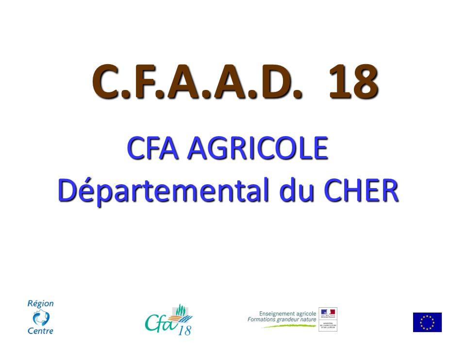 Formation dispensée en apprentissage NOUVEAUTE 2014 CFAAD du Cher Le sollier – 18570 Le Subdray cfa.cher@educagri.fr02.48.70.77.12