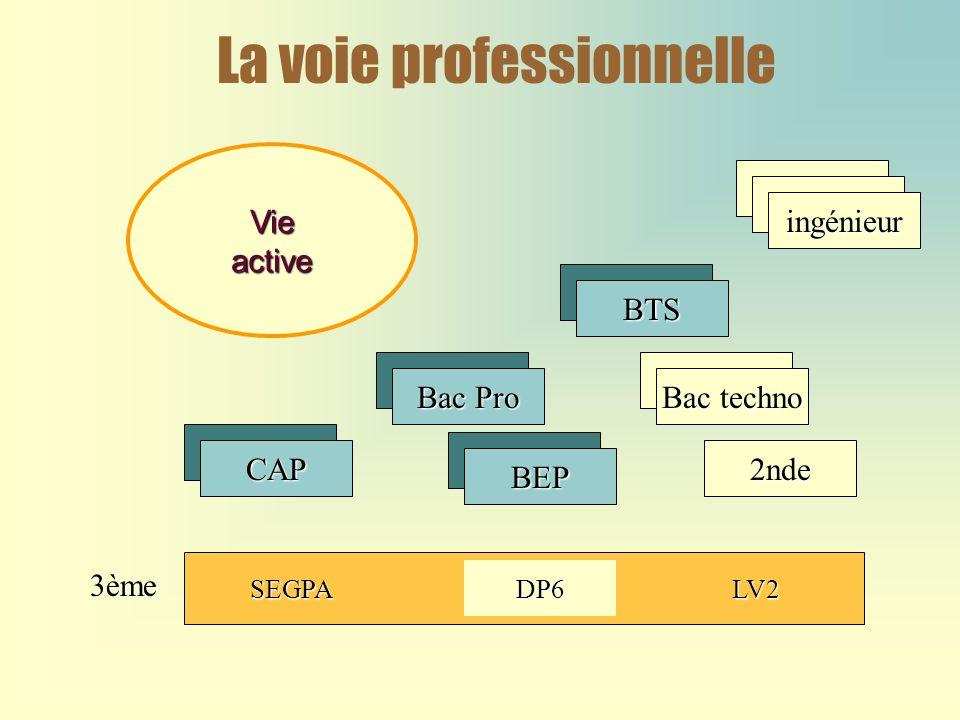 La voie professionnelleBTS Bac techno 2nde Bac Pro BEP CAP Vieactive SEGPADP6LV2 ingénieur 3ème