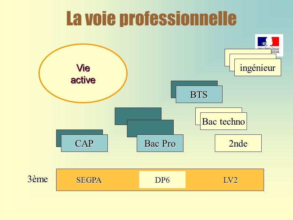 La voie professionnelleBTS Bac techno 2ndeCAP Vieactive SEGPADP6LV2 ingénieur Bac Pro 3ème