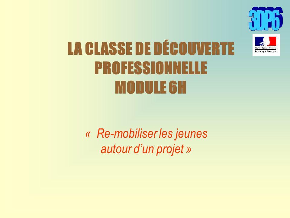 LA CLASSE DE DÉCOUVERTE PROFESSIONNELLE MODULE 6H « Re-mobiliser les jeunes autour dun projet »