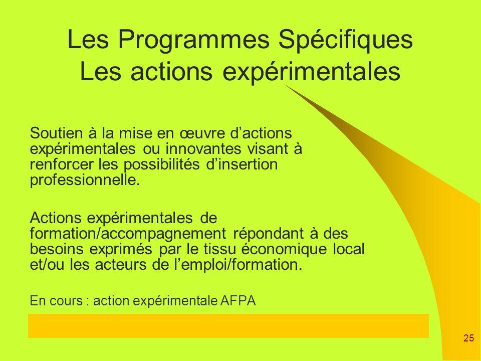 25 Soutien à la mise en œuvre dactions expérimentales ou innovantes visant à renforcer les possibilités dinsertion professionnelle. Actions expériment