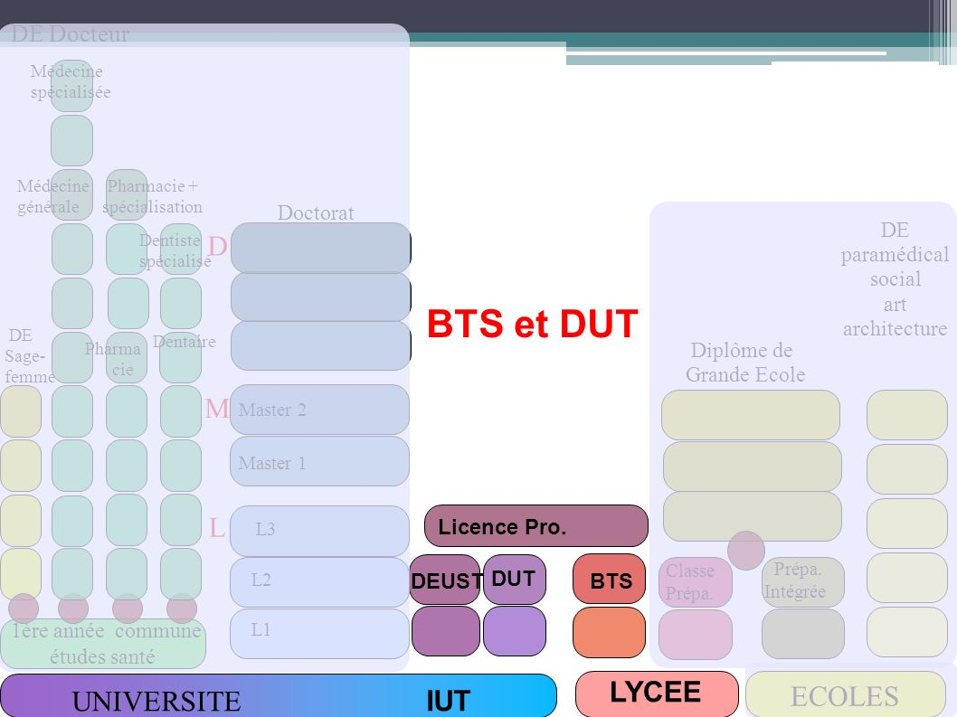 BTS ou DUT : comment choisir.