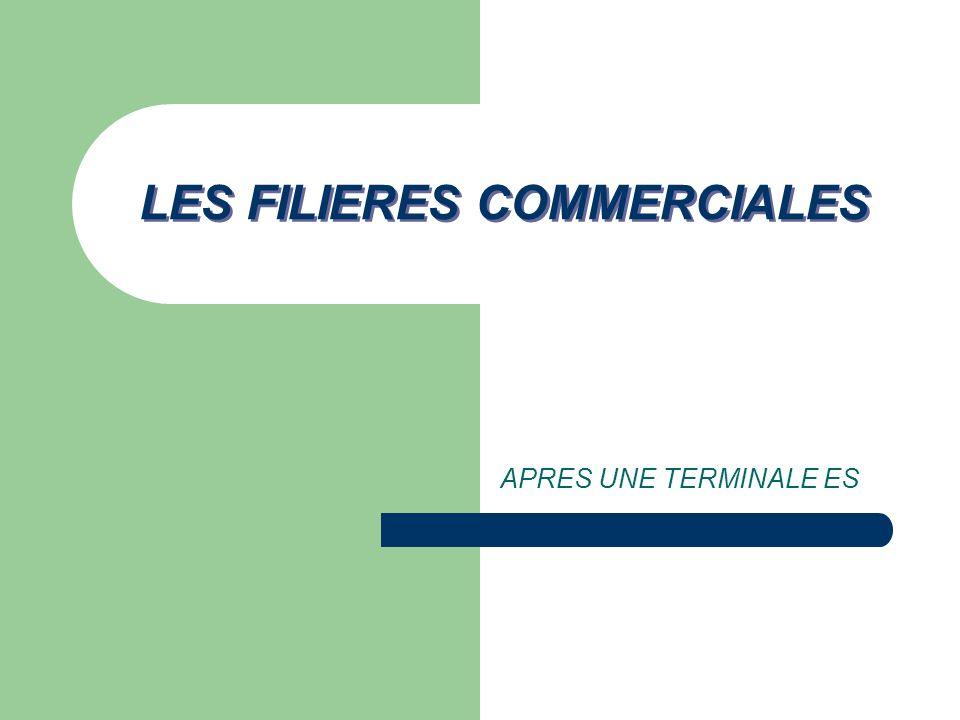 LES PARCOURS POSSIBLES… LES FORMATIONS COURTES (+2 +3ans) BTS DUT LICENCE PROFESSIONNELLE BACHELOR LES FORMATIONS LONGUES MASTER DIPLÔME D ECOLES DE COMMERCE LES FORMATIONS LONGUES MASTER DIPLÔME DECOLES DE COMMERCE: MBA…
