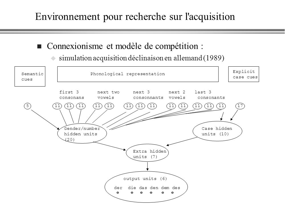 Environnement pour recherche sur l'acquisition n Connexionisme et modèle de compétition : u simulation acquisition déclinaison en allemand (1989) Sema