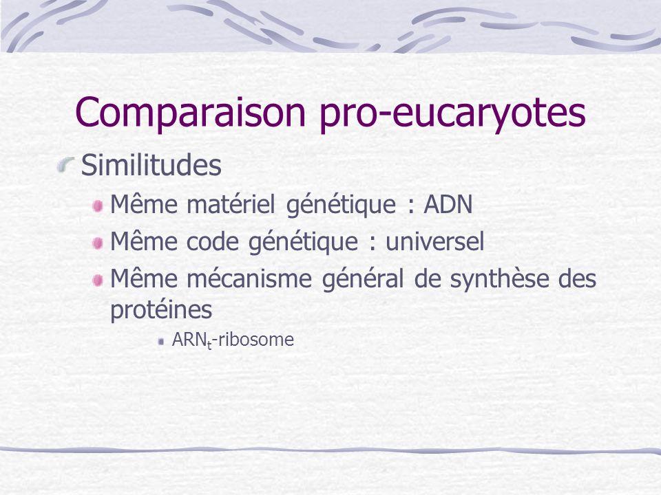 Comparaison pro-eucaryotes Similitudes Même matériel génétique : ADN Même code génétique : universel Même mécanisme général de synthèse des protéines