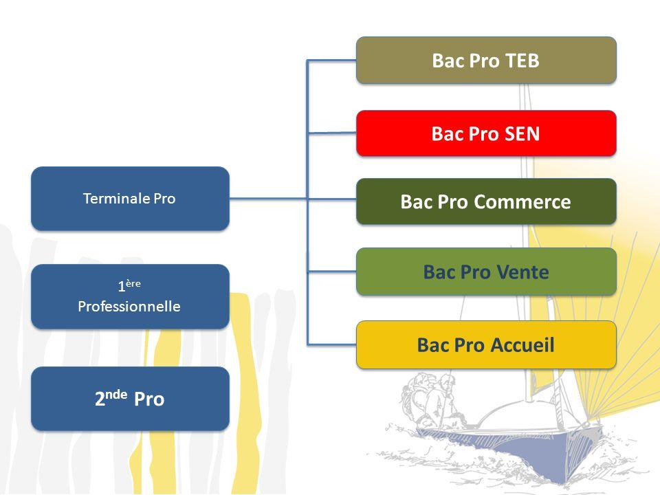 2 nde Pro Terminale Pro 1 ère Professionnelle 1 ère Professionnelle Bac Pro SEN Bac Pro TEB Bac Pro Commerce Bac Pro Vente Bac Pro Accueil