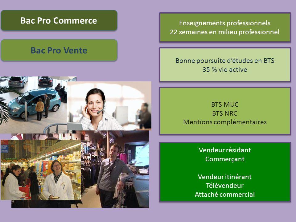 Enseignements professionnels 22 semaines en milieu professionnel Enseignements professionnels 22 semaines en milieu professionnel Vendeur résidant Com