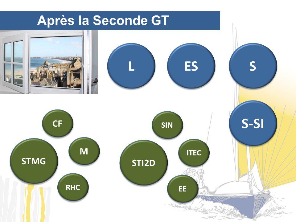 Après la Seconde GT L L ES S S STMG M M CF RHC S-SI STI2D ITEC SIN EE