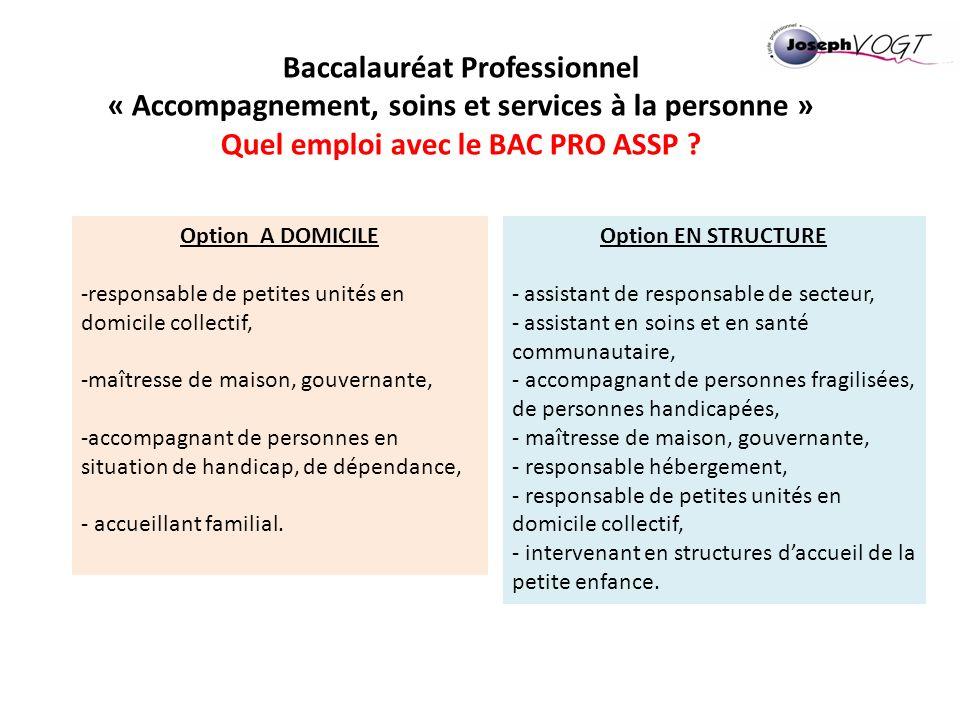 Baccalauréat Professionnel « Accompagnement, soins et services à la personne » Quel emploi avec le BAC PRO ASSP ? Option A DOMICILE -responsable de pe
