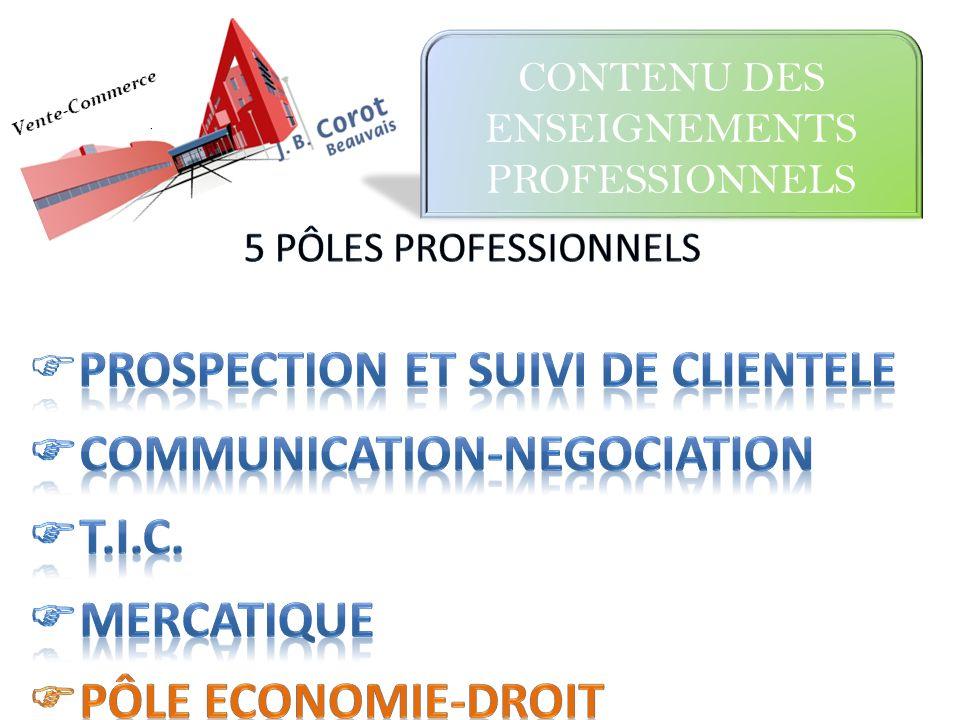 CONTENU DES ENSEIGNEMENTS PROFESSIONNELS