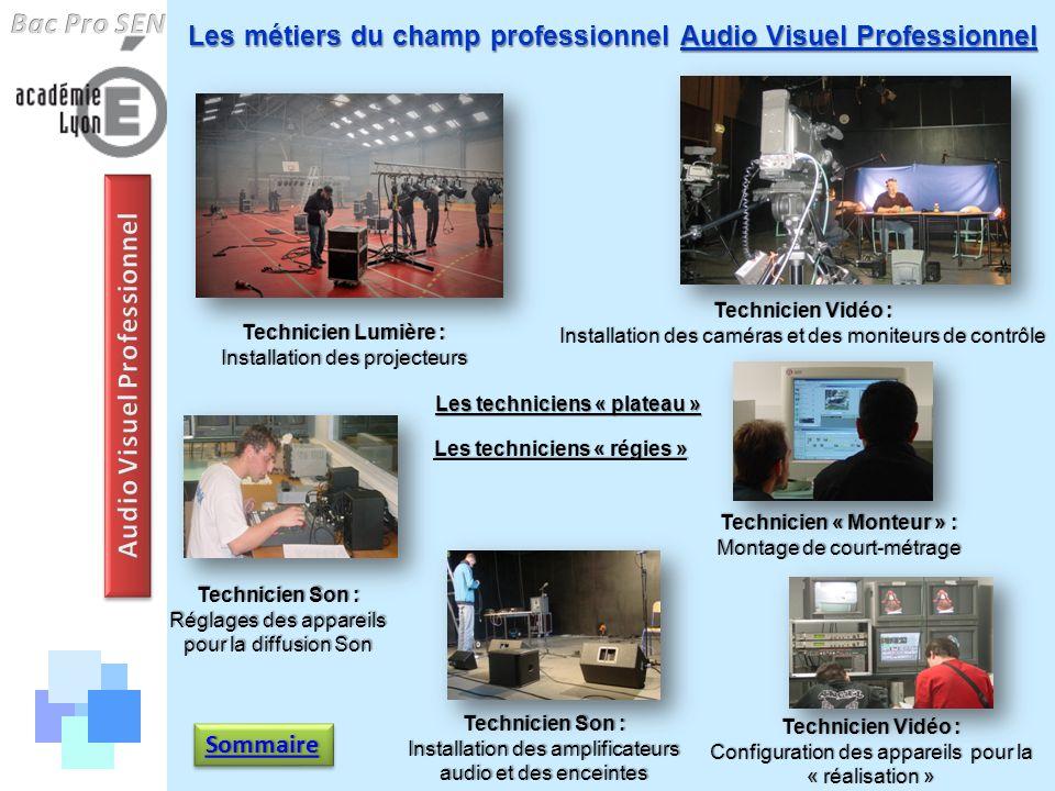 Les métiers du champ professionnel Audio Visuel Professionnel Technicien Lumière : Installation des projecteurs Technicien Vidéo : Installation des ca