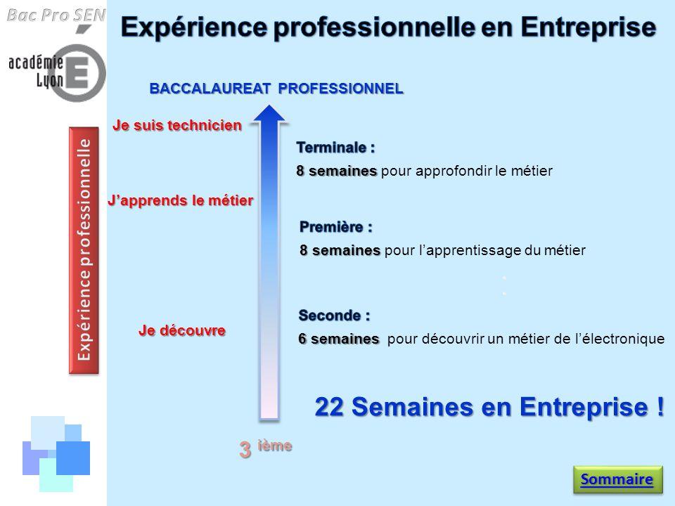 Je découvre Japprends le métier Je suis technicien BACCALAUREAT PROFESSIONNEL 3 ième 22 Semaines en Entreprise ! Sommaire