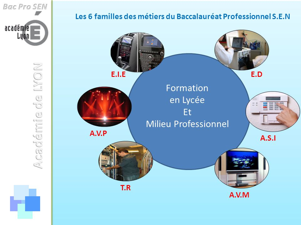 Les 6 familles des métiers du Baccalauréat Professionnel S.E.N A.V.M A.V.P E.I.E T.R E.D A.S.I Formation en Lycée Et Milieu Professionnel
