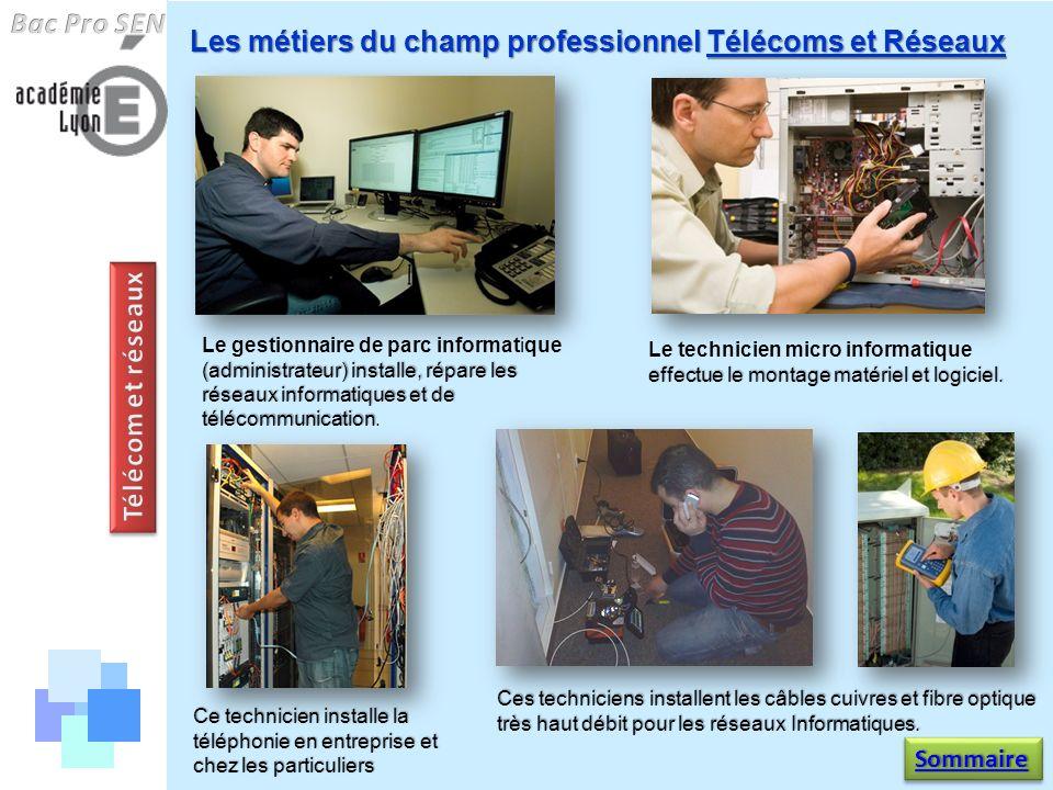Les métiers du champ professionnel Télécoms et Réseaux (administrateur) installe, répare les réseaux informatiques et de télécommunication Le gestionn