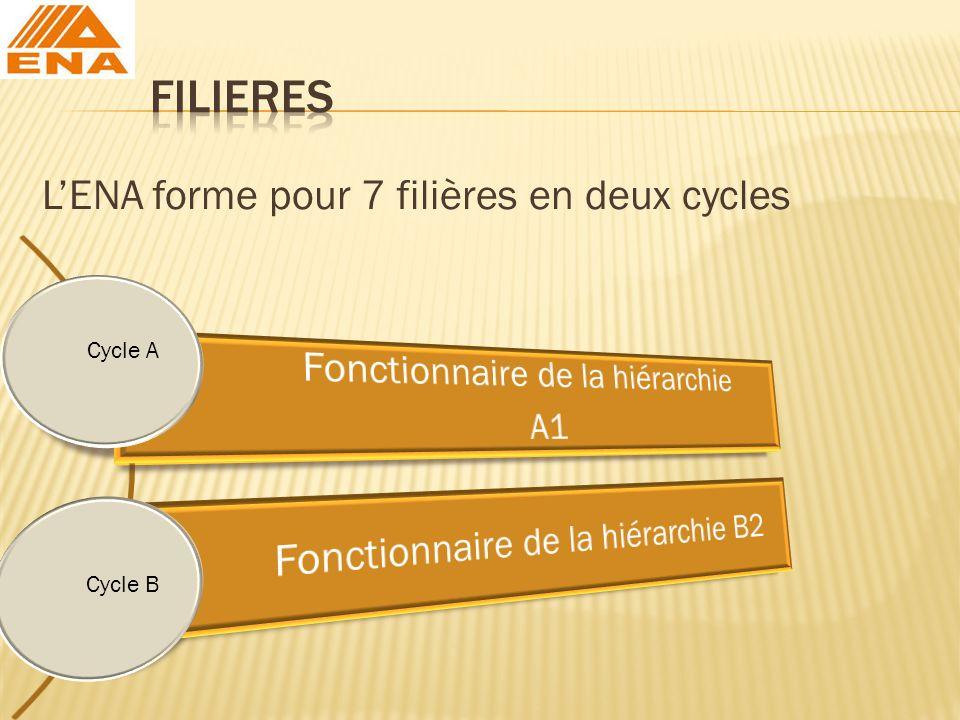 LENA forme pour 7 filières en deux cycles Cycle B Cycle A