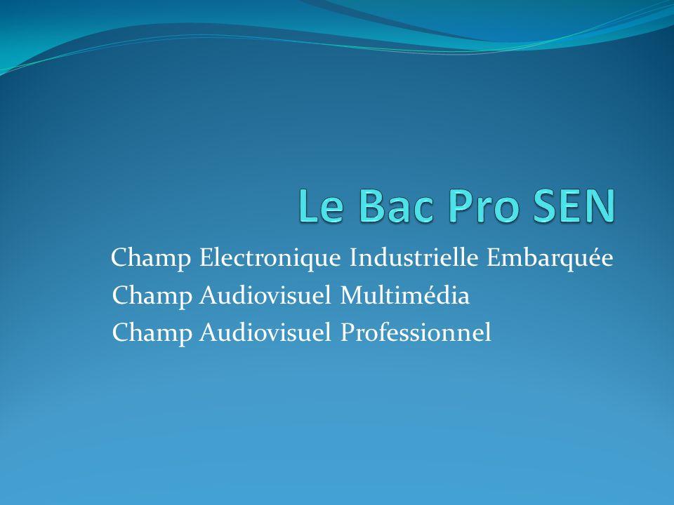 Champ Electronique Industrielle Embarquée Champ Audiovisuel Multimédia Champ Audiovisuel Professionnel