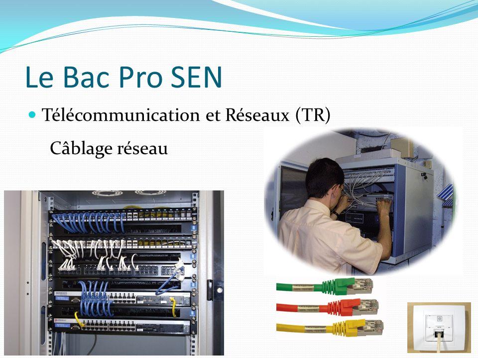 Le Bac Pro SEN Télécommunication et Réseaux (TR) Câblage réseau