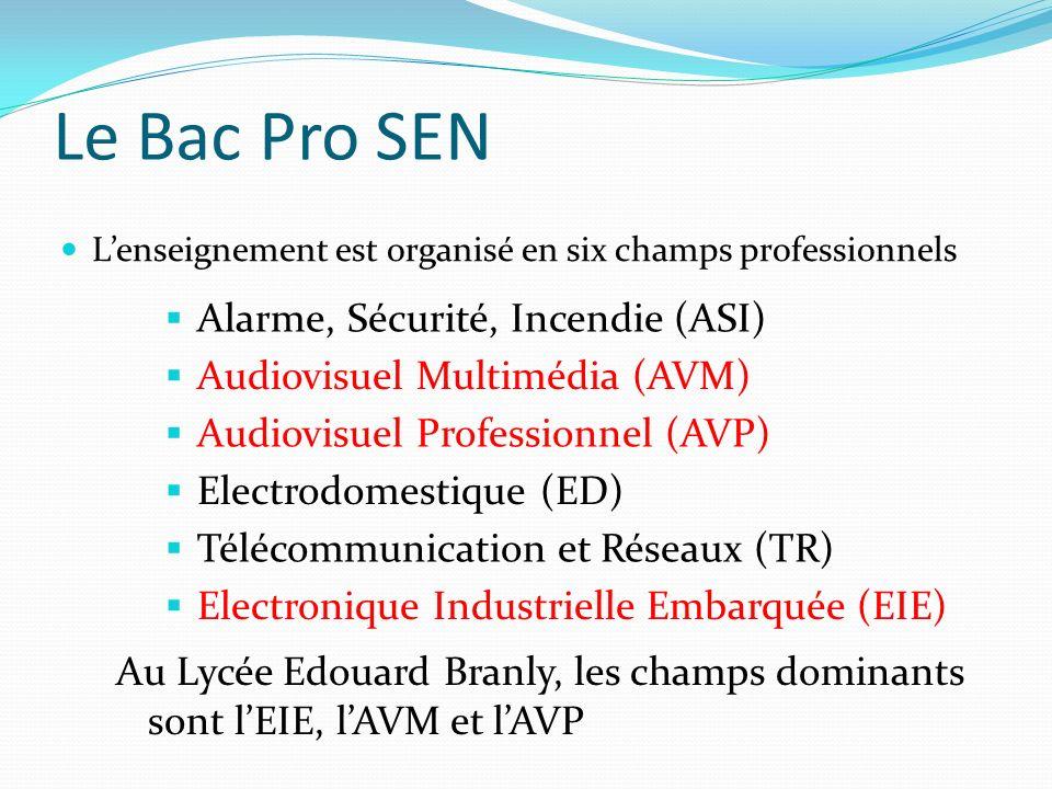 Le Bac Pro SEN Lenseignement est organisé en six champs professionnels Alarme, Sécurité, Incendie (ASI) Audiovisuel Multimédia (AVM) Audiovisuel Professionnel (AVP) Electrodomestique (ED) Télécommunication et Réseaux (TR) Electronique Industrielle Embarquée (EIE) Au Lycée Edouard Branly, les champs dominants sont lEIE, lAVM et lAVP