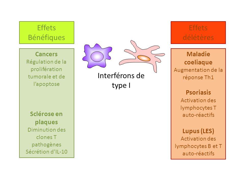 Cancers Régulation de la prolifération tumorale et de lapoptose Sclérose en plaques Diminution des clones T pathogènes Sécrétion dIL-10 Effets délétèr
