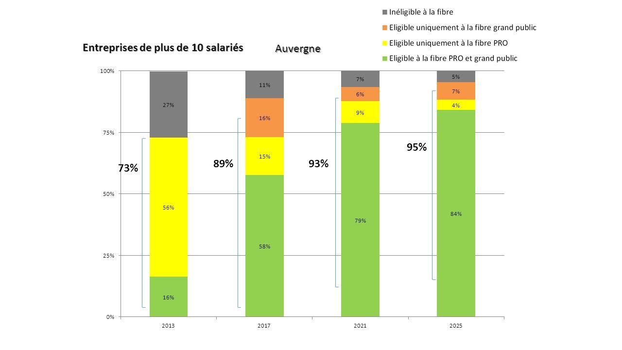 Auvergne Entreprises de plus de 10 salariés 89% 95% 73% 93%