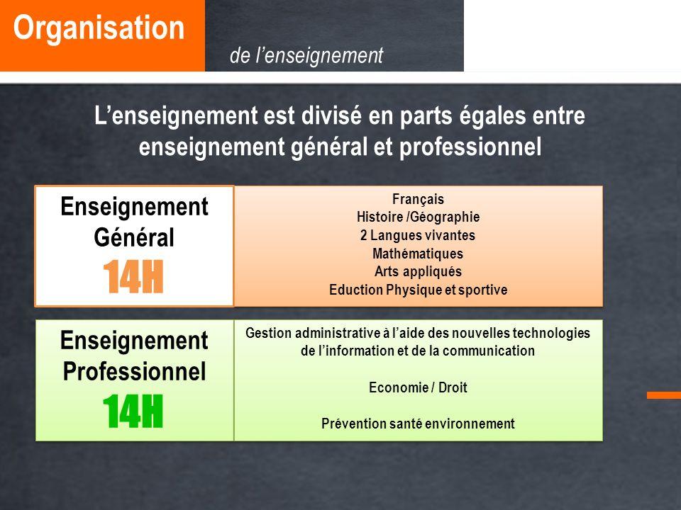 Lenseignement est divisé en parts égales entre enseignement général et professionnel Enseignement Professionnel 14H Enseignement Professionnel 14H Ens