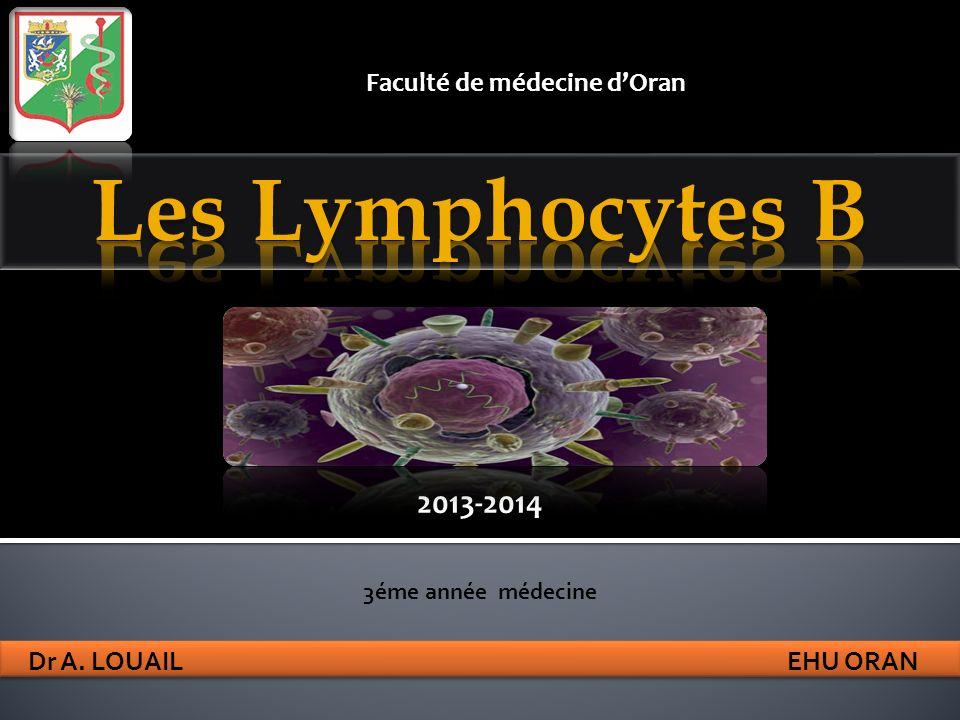 Les anomalies du lymphocytes B peuvent aboutir aux 4 grands types de maladies observés en immunopathologie : les déficits immunitaires, les allergies, les proliférations lymphoïdes et les maladies auto-immunes Lymphocytes B
