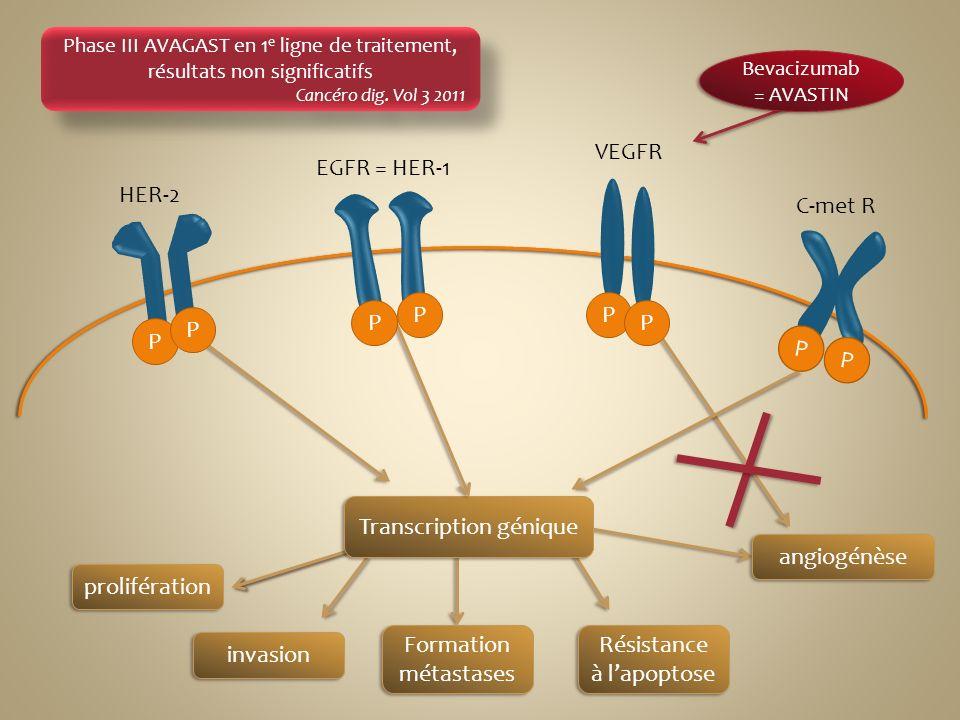 prolifération invasion Formation métastases Résistance à lapoptose Bevacizumab = AVASTIN Phase III AVAGAST en 1 e ligne de traitement, résultats non s