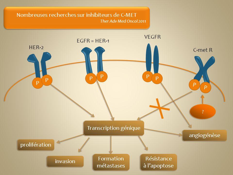 prolifération invasion Formation métastases Résistance à lapoptose ? ? Nombreuses recherches sur inhibiteurs de C-MET Ther Adv Med Oncol 2011 Nombreus