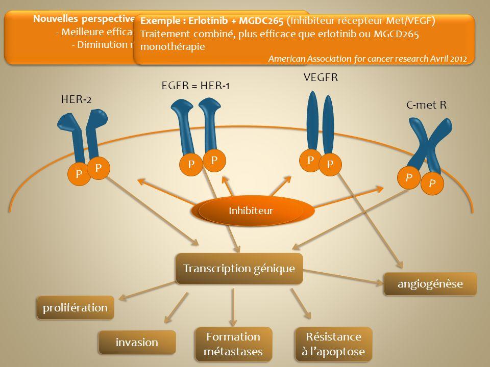 prolifération invasion Formation métastases Résistance à lapoptose P Inhibiteurs multikinase Nouvelles perspectives : thérapeutiques multi-cibles : -