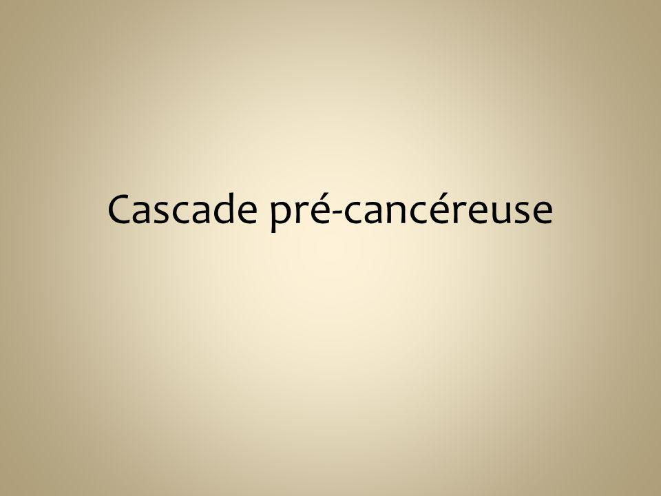 Cascade pré-cancéreuse